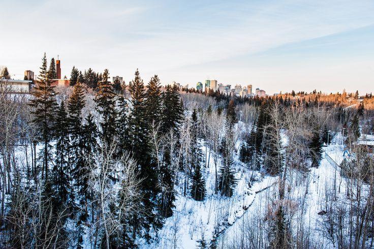 Edmonton (Canada): schaatsen, fietsen of segwayen door een ondergesneeuwde riviervallei, ronddwalen door gigantische ijskastelen, feestvieren op het winterse Silver Skate Festival en bizons spotten op Elk Island. Het Canadese Edmonton verandert 's winters in sneeuwparadijs.