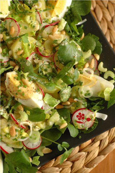 Salade pomme de terre, cresson, radis, céleri branche, oeuf dur, pignon_2