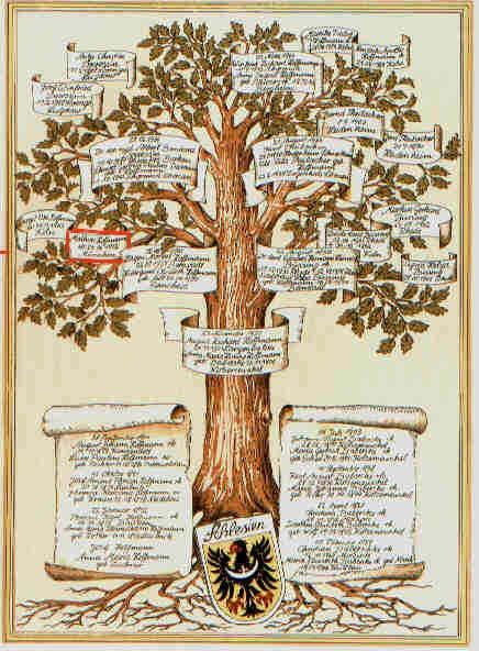 ψ Family Trees ψ diy genealogy & ancestry ideas - Familien Stammbaum Hoffmann - Tobias Hoffmann Düsseldorf