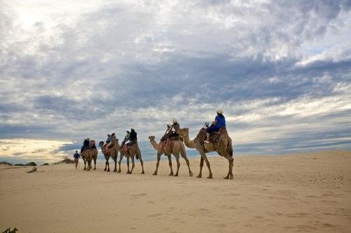 Stockton Sand Dunes, Port Stephens NSW