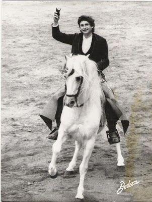 Peralta-Caballos PRE venta-Yeguada Pura Raza Español y CDE-Spanish horses-Elevage-Chevaux-Peralta: peralta horses