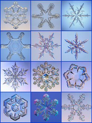 Actual snowflakes - magnified!