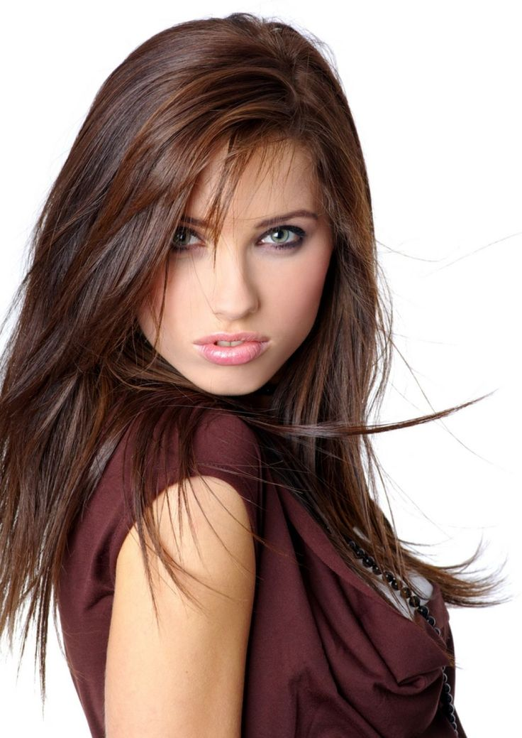 Dark Brown Hair With Dark Auburn Hair Color Highlights 17 ...