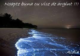 Imagini pentru imagini haioase pt noapte buna
