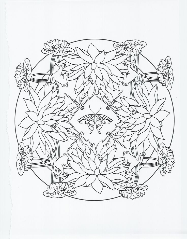 animal mandala frog coloring pages pinterest