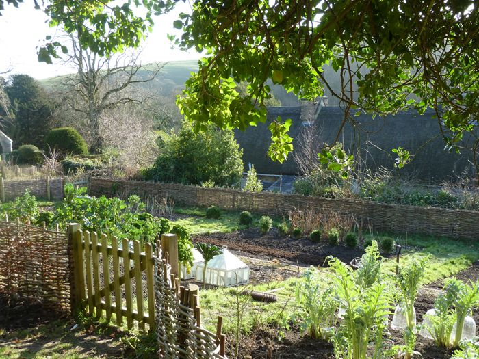 a country vegetable garden