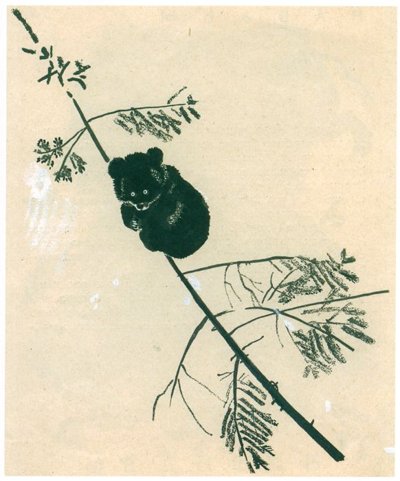 Музей рисунка - Евгений Иванович Чарушин (1901-1965гг).
