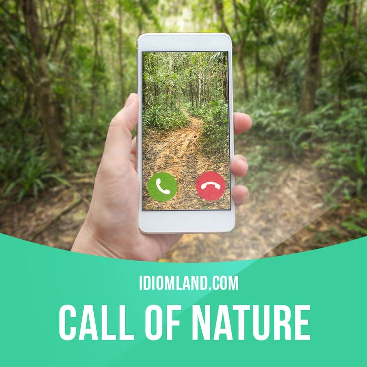 """""""Call of nature"""" is the need to go to the toilet. Example: The driver stopped his truck to answer the call of nature."""