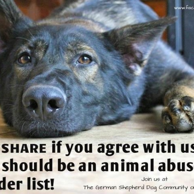 Best NO EXCUSE FOR ABUSE Images On Pinterest Animal Rights - Animal abusers will finally registered just like happens sex offenders