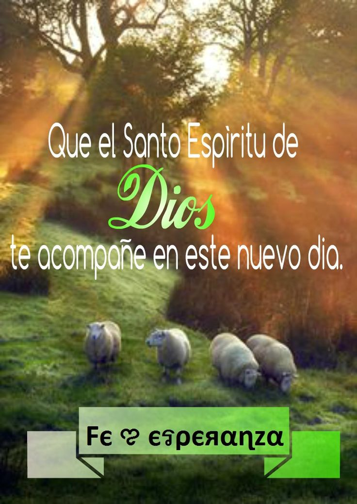 Que el Santo Espíritu de Dios te acompañe en este nuevo día