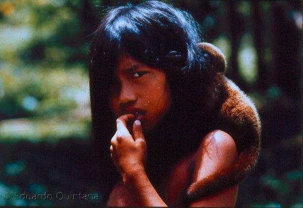 The Culture of the Huaorani of Ecuador