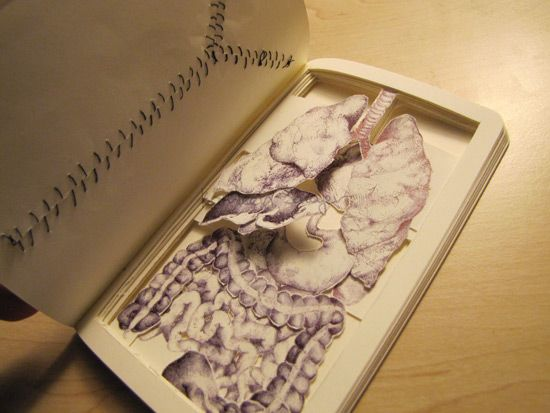 Kathleen Sawyer Book Autopsy - begins with the telltale autopsy suture and opens up to reveal the organs layered on top of each other with each turn of the page.