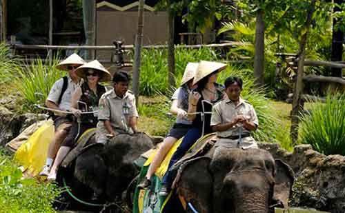 Bali Safari Marine Park Discount Tickets for ELEPHANT BACK SAFARI PACKAGE