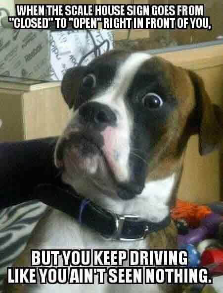 Funny Trucking Memes & Truck Driver Jokes
