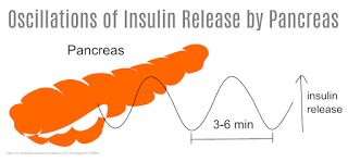 Recombinant DNA Technology For Insulin Production http://ift.tt/1Px1zMx