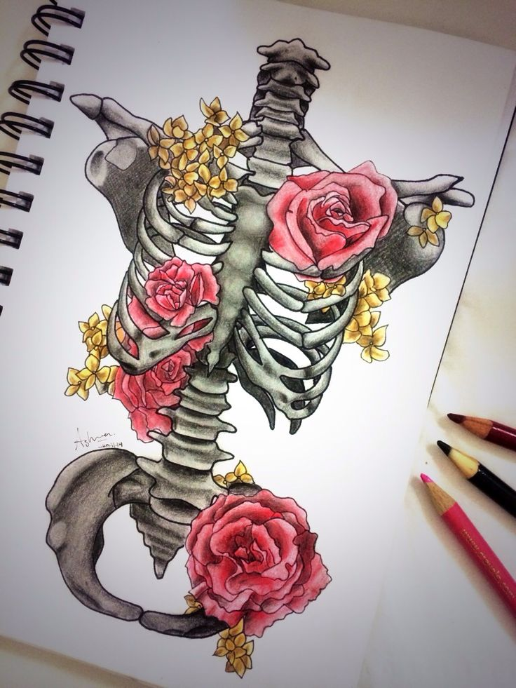 Bones and roses. Drawing. Ink. Illustration. Coloured pencils. Skeleton.