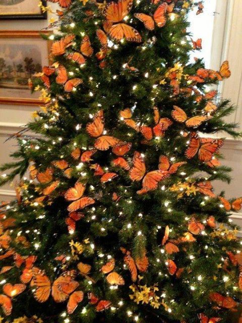 lil has asked for a butterfly christmas tree this year - Orange Christmas Tree Decorations