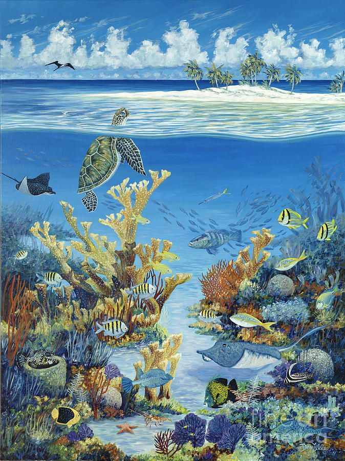 Best of Both Worlds by Danielle Perry ~ under the sea art turtle tropical fish reef coral
