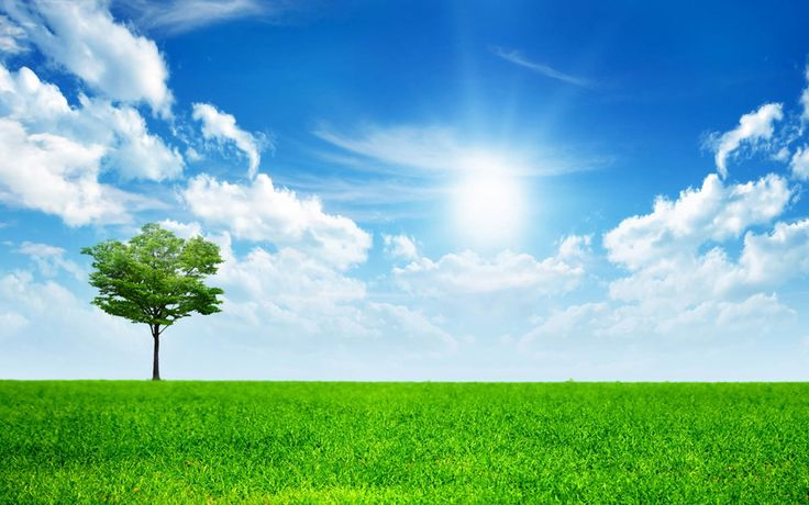 Beautiful Nature Wallpapers Backgrounds, Images, Pictures 1400 ...