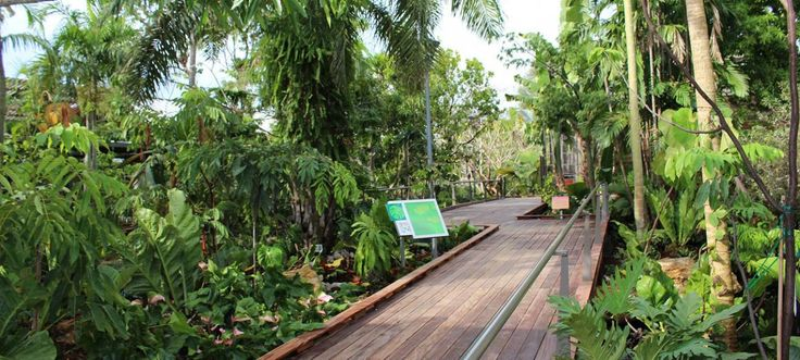 The best outdoor attractions and top things to do in Naples Florida include a visit to the botanic garden. See the Botanical Garden Events Calendar.