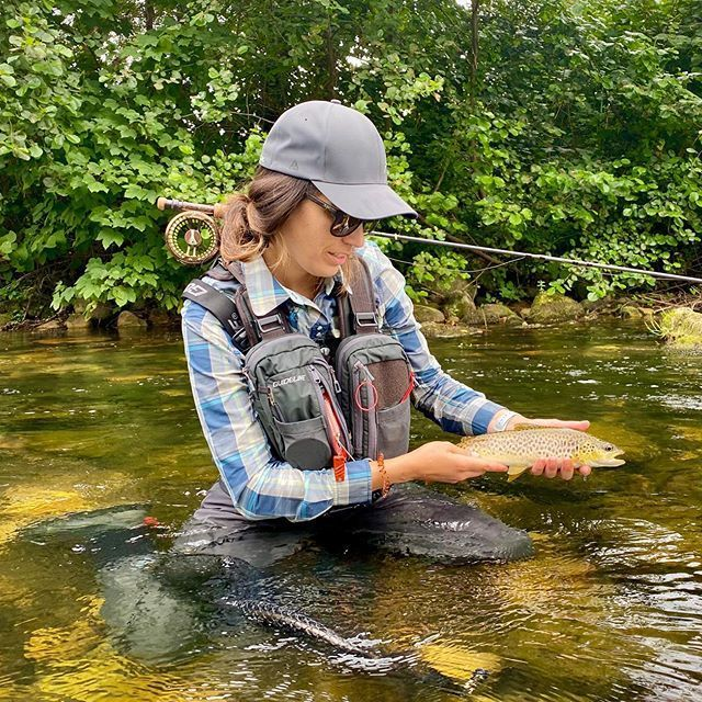Brown Trout Fly Fishing In 2021 Fly Fishing Flies Trout Fly Fishing Fly Fishing For Beginners