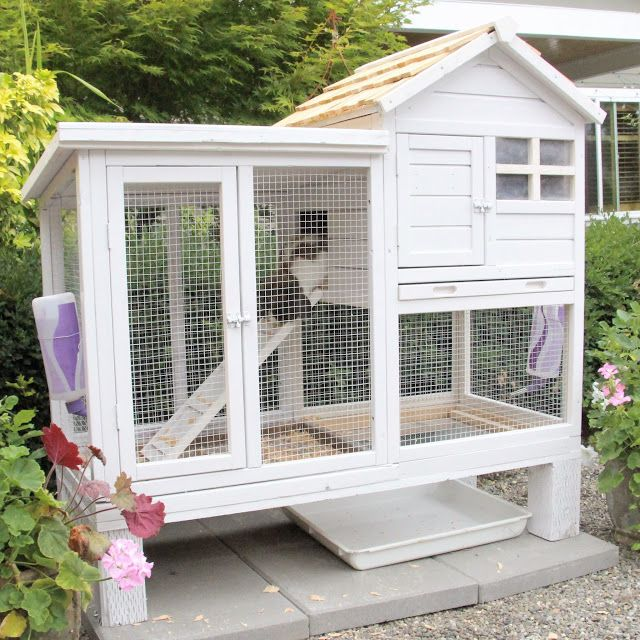 Best 25 outdoor rabbit hutch ideas on pinterest outdoor for Homemade bunny houses