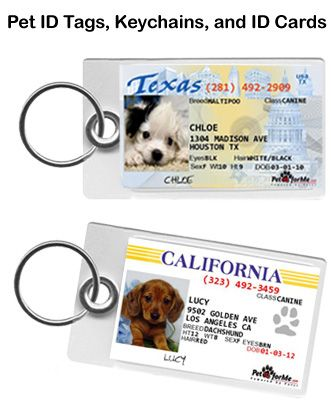 "Pet ID For Me   State ID Dog Tags for your Pets. All states available. Coupon Code ""CDP""  for $10 tags"