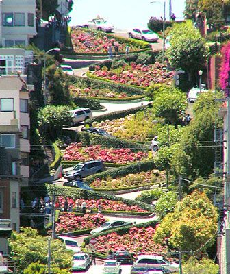 This is something I've seen. San Francisco has this weird street (Lombard Street) with a crazy and seriously lanscaped windy road. It's a tourist attraction that probably drives the locals mad, but it's an interesting sight.: Bucket List, Lombard Street, Favorite Places, California, Sanfrancisco, Street San, Travel, San Francisco