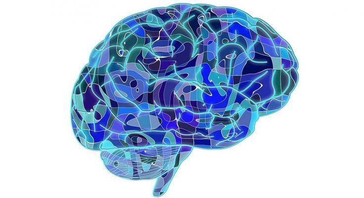 Describimos los diferentes tipos de memoria y cómo el cerebro humano guarda la información que percibimos en recuerdos. Memoria episódica, a corto plazo...