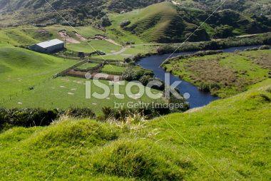 Lush Green Rural Scene, Golden Bay, NZ Royalty Free Stock Photo