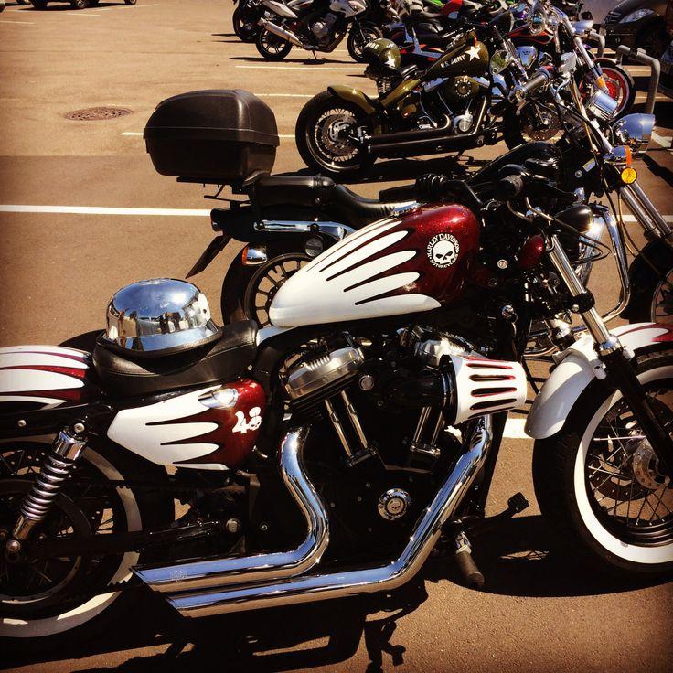 Harley 46
