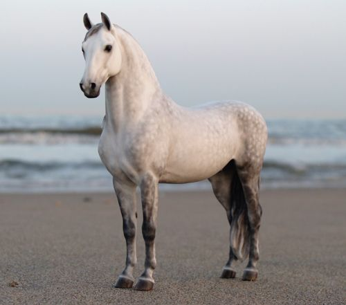 Faran by Josine Vingerling. Looks so lifelike that I first pinned this to my horse board!!
