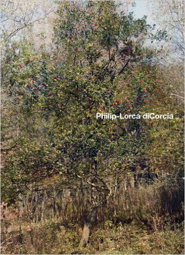 Amazon.com: Philip-Lorca diCorcia (9783866788350): Geoff Dyer, Katharina Dohm, Max Hollein, Philip-Lorca diCorcia: Books