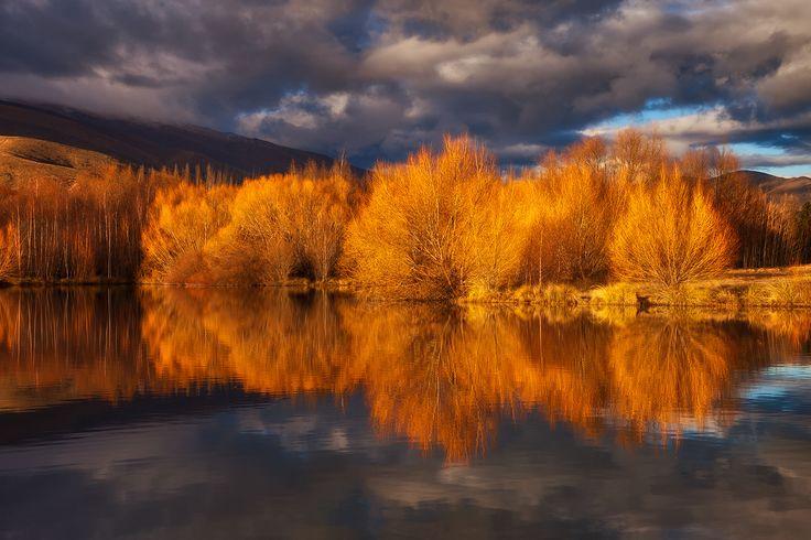 A Blaze Of Glory. - Twizel, New Zealand.  Darren J.