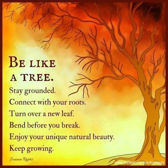 Großartig Großartig Natur Zitate & Positive Bes…