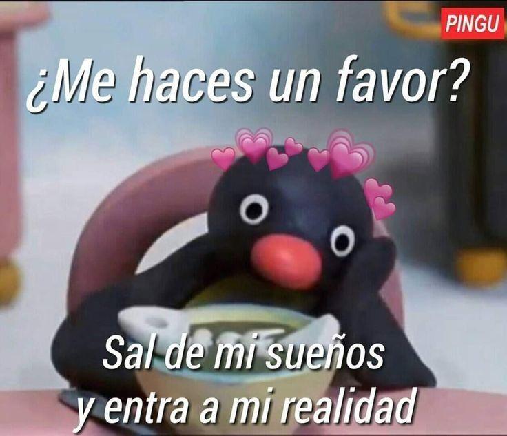 O1 Memes De Pingu Diecisiete Frases De Pinguinos
