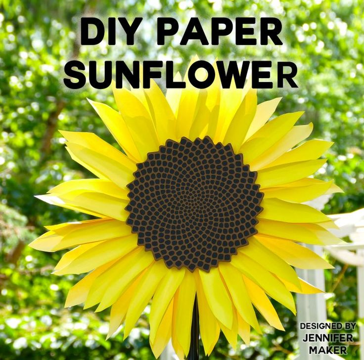 DIY Paper Flowers The Best Free Tutorials, Patterns