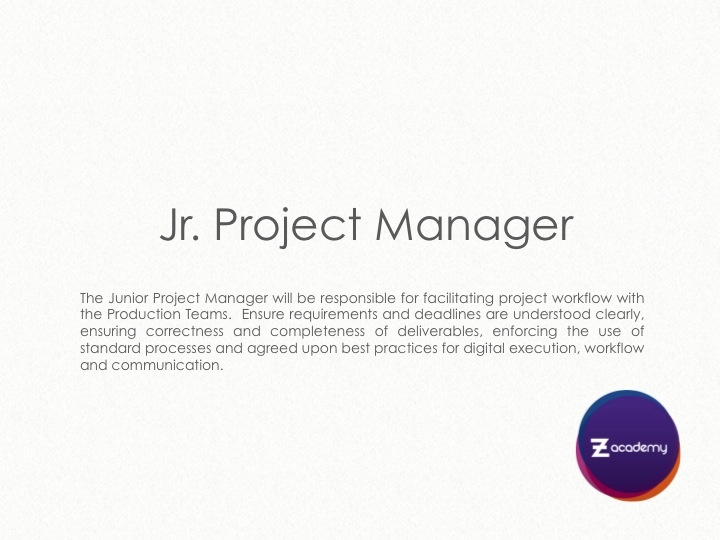 Jr. Project Manager