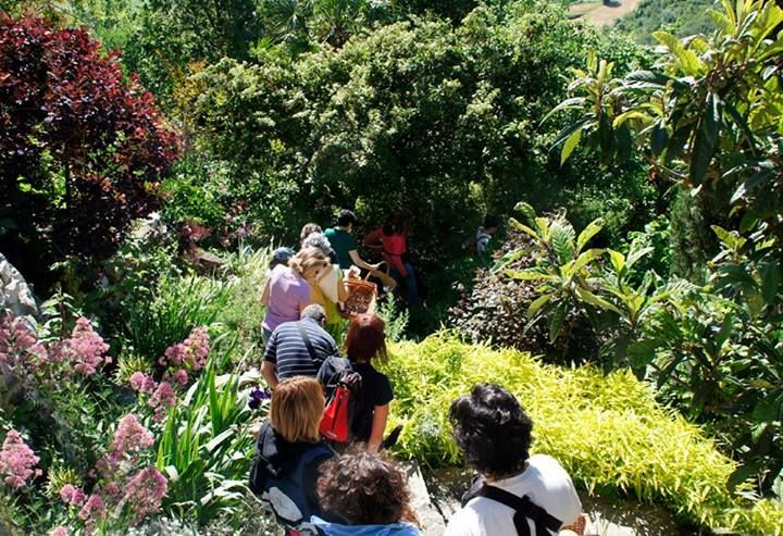 """The people starting the walk in the Woodly's garden, the  first wokshop of the """"Locanda""""!"""