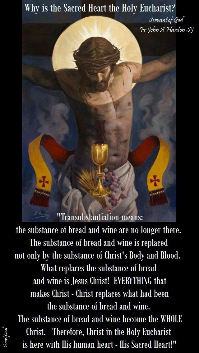 Why is the Sacred Heart the Holy Eucharist? It is impossible to identify the Holy Eucharist too closely with Jesus Christ. We should remember He is in the Holy Eucharist not merely with His substance... ~ AnaStpaul