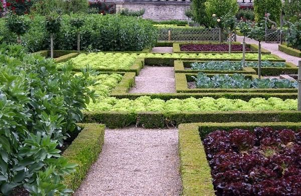 Декоративный огород в Вилландри