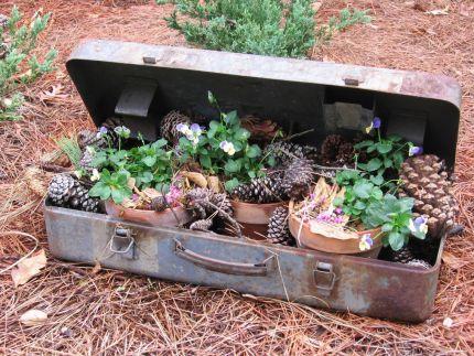 Suitcase Garden VignettenGardens Ideas, Junk Garden, Boxes Planters, Rusty Metal, Tools Boxes, Succulent Garden, Metals Cases, Boxes Turn, Metals Boxes