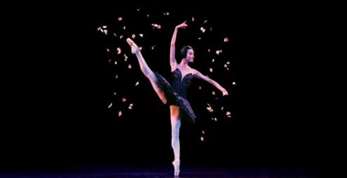 Queensland Ballet - A Classical Celebration | Lasttix | Half Price Tickets | Last Minute tickets | Cheap Tickets | Theatre Tickets | Concert Tickets | Musical Tickets & More