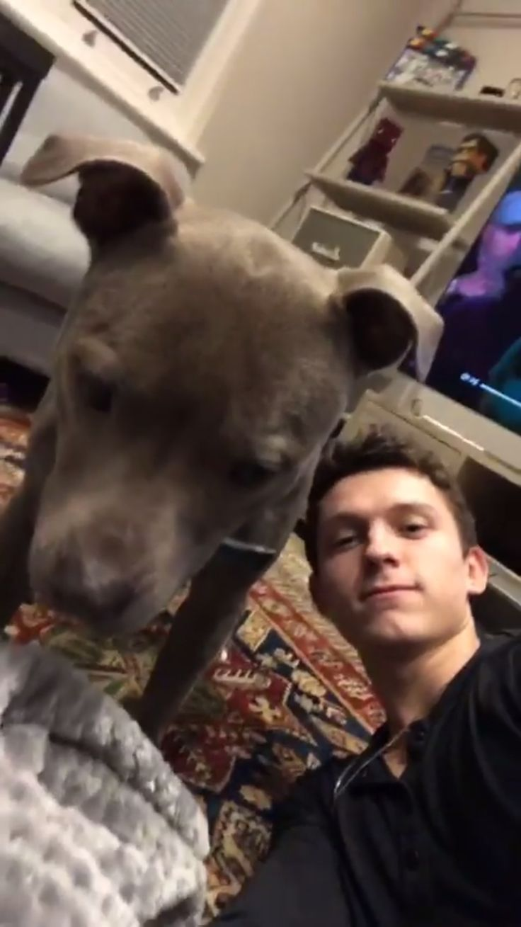 This is over 100% cuteness❤️ #tomholland #tessa #relationshipgoals