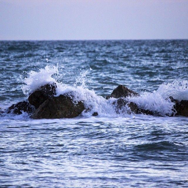 SENTINELLA / SENTINEL   |   #my_marina eBook   |   Photo courtesy of @G Fo Tolli [http://instagram.com/giuliotolli]