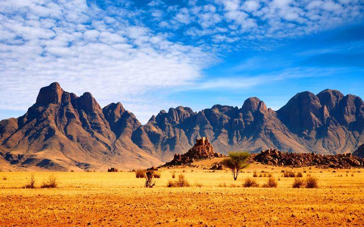 african_savanna-wide.jpg (2880×1800)
