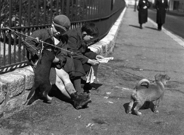 Les chiots en laisse | Paris 1934 |¤ Robert Doisneau | 27 mars 2015 | Atelier Robert Doisneau | Site officiel