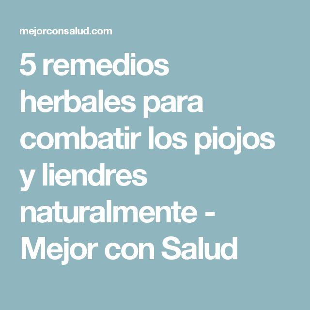 5 remedios herbales para combatir los piojos y liendres naturalmente - Mejor con Salud