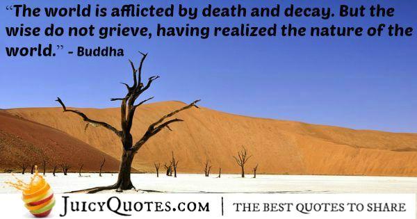 Buddha Quote - 53