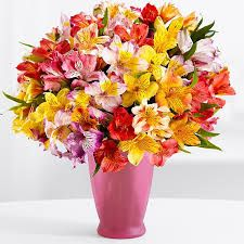 https://www.flowerwyz.com/  Lovely Yet Cheap Flowers,  Flowerwyz,Flower Wyz,Flowerwyz Flower Delivery,Flower Delivery,Flowers Online,Send Flowers,Flowers Delivery,Cheap Flowers,Cheap Flower Delivery,Online Flowers,Sending Flowers,Send Flowers Online,Flowers Delivered,Online Flower Delivery,Send Flowers Cheap,Best Flower Delivery,Flowers For Delivery,Cheap Flowers Delivered,Deliver Flowers,Delivery Flowers,Flowers To Send,Flower Deliveries,Best Online Flowers,Flowers Free Delivery